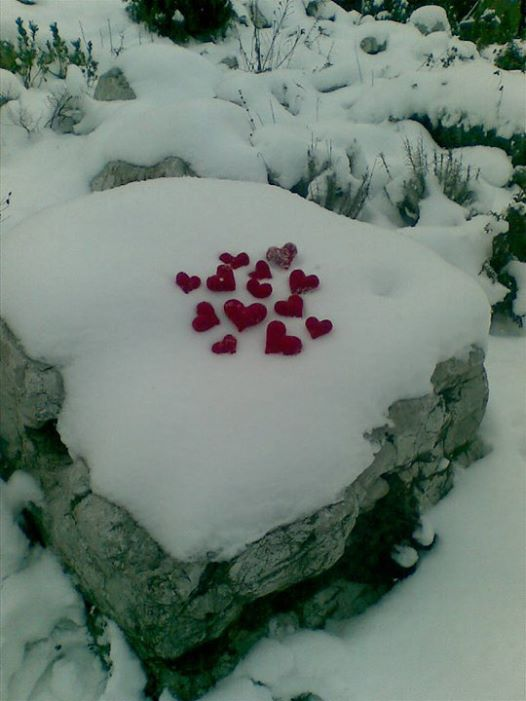 snow hearth 11