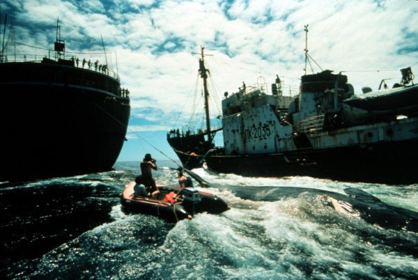 GreenPeace_How to change the world (5)
