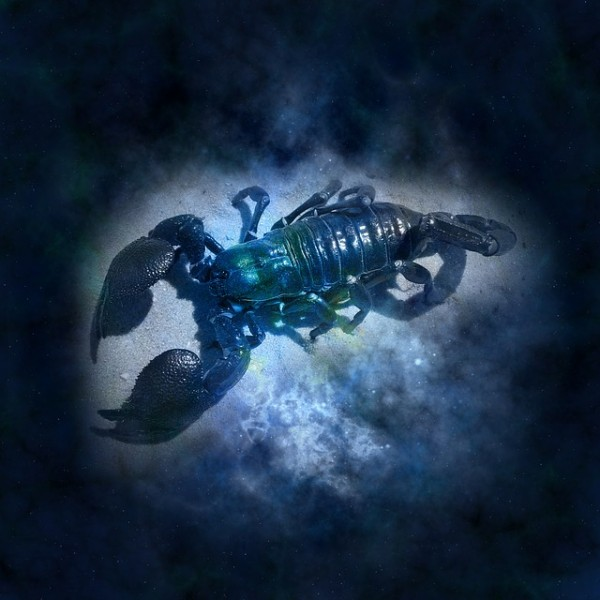 horoscope scorpion p